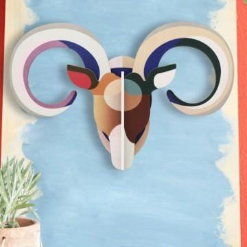 trophée mouflon
